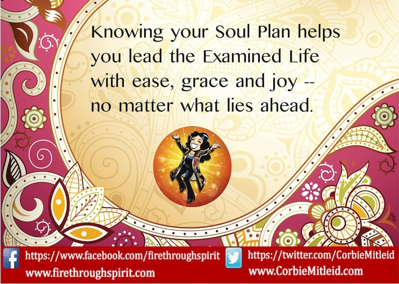 Soul Plan: What Is a Soul Plan?